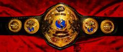 NWA WORLD JUNIOR