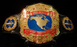 NWA NORTH AMERICAN