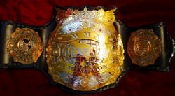 MMA JAPAN