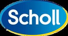 Climdal distribue Scholl