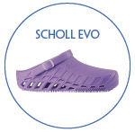 CLIMDAL SCHOLL EVO.jpg