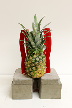 Pineapple Project-6784