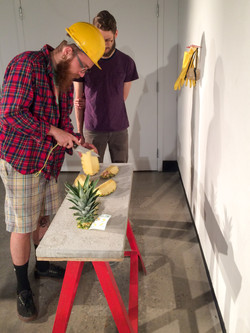 Pineapple Project-9171