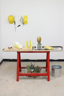 Pineapple Project-6761