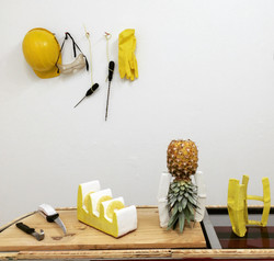 Pineapple Project-7201