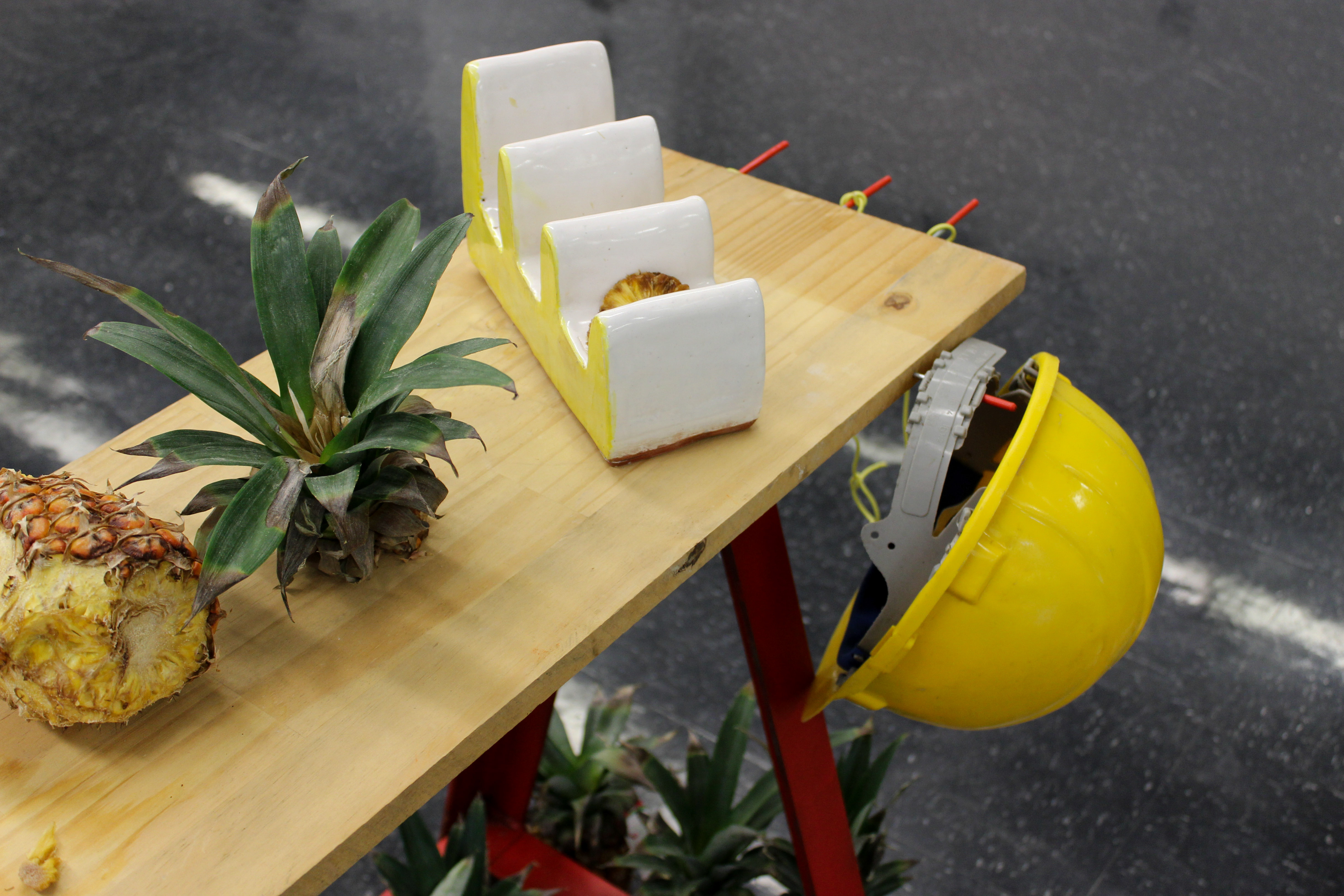 Pineapple Project-7650