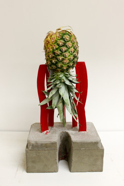 Pineapple Project-6783