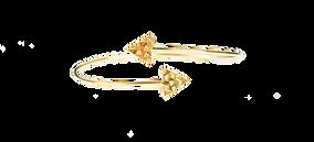DSC05503-2.png