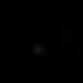 Black WPM Logo copy.png