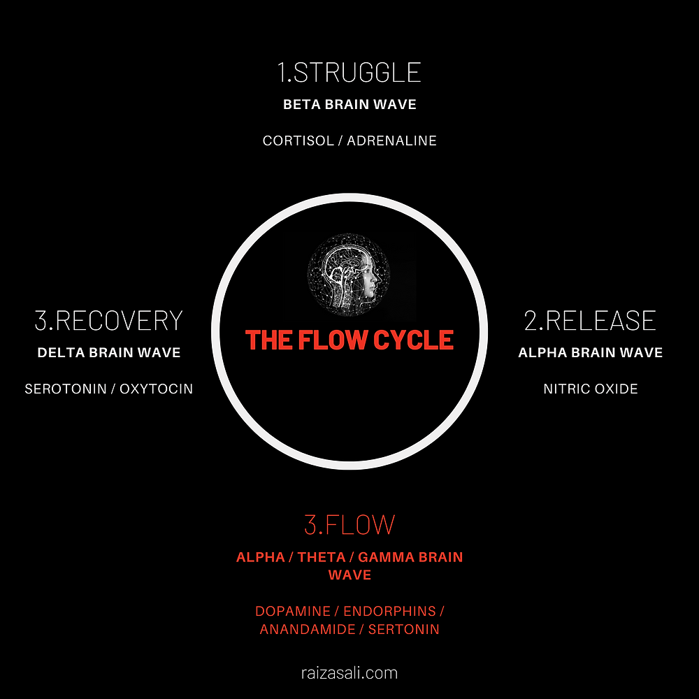 The 4 phases of the flow cycle