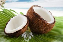 costa rica, coco, Pandeazucar