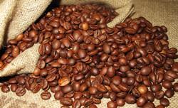 costa rica, café_grain, Pandeazucar