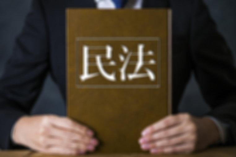 IT,訴訟,紛争,eラーニング,Eラーニング,イーラーニング,講座,研修,セミナー,