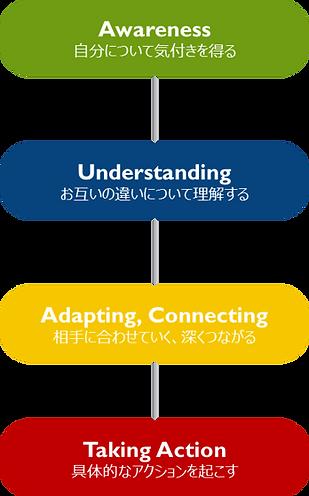 Insights®Discoveryプログラム-ワークショッププロセスのイメージ