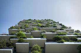 BAFA KfW Förderung Enegieaudit Energieberatung Wärmeschutz Sanierung