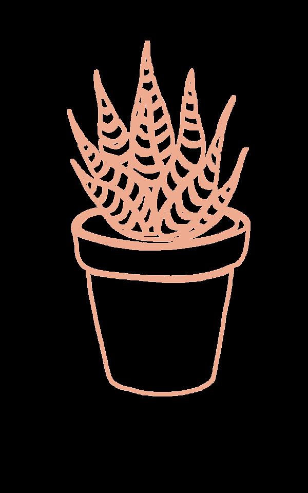 succulents-07.png