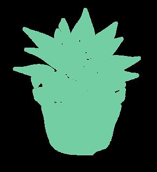 succulents-01.png
