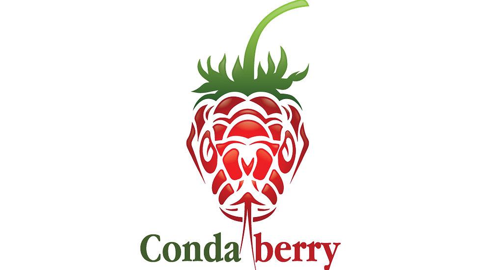 Condaberry