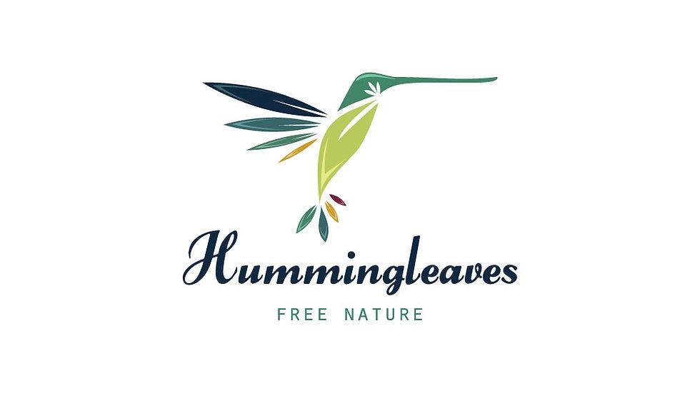 Humming Bird Leaves