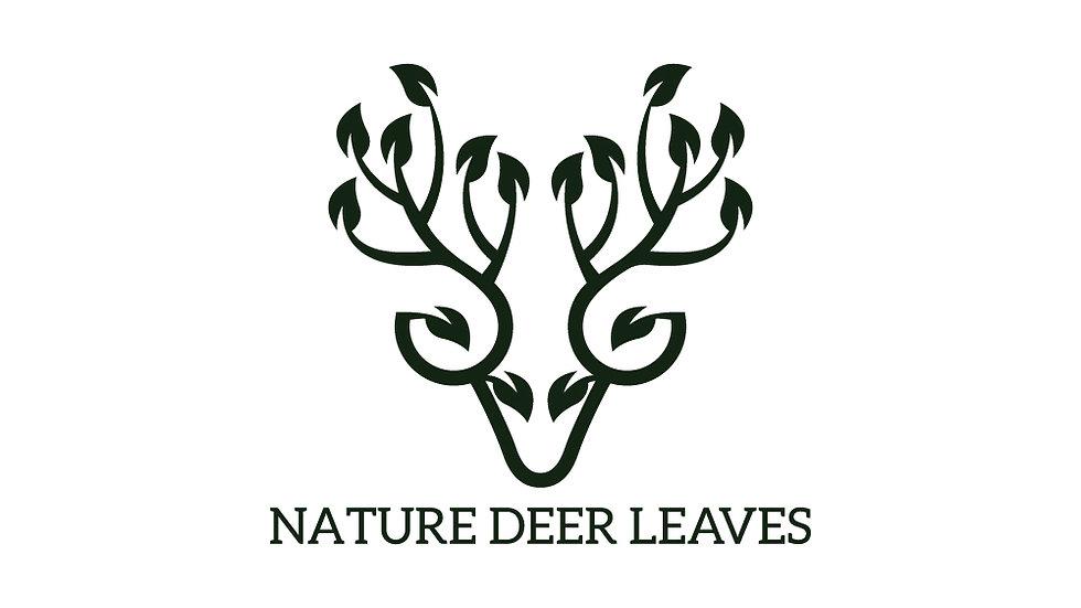 Deer Leaves Nature