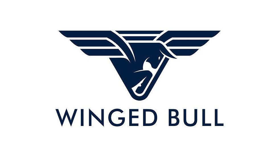 Winged Bull