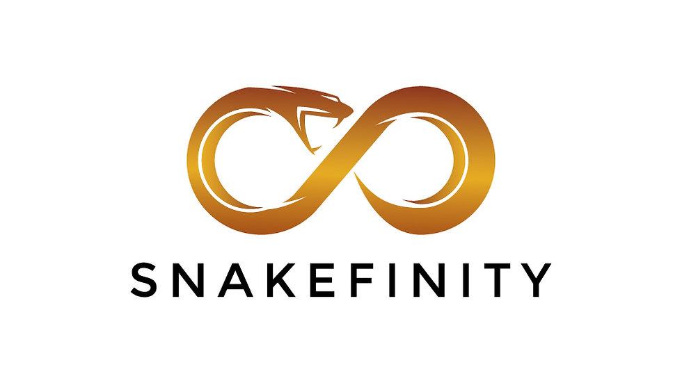 Snake Infinity