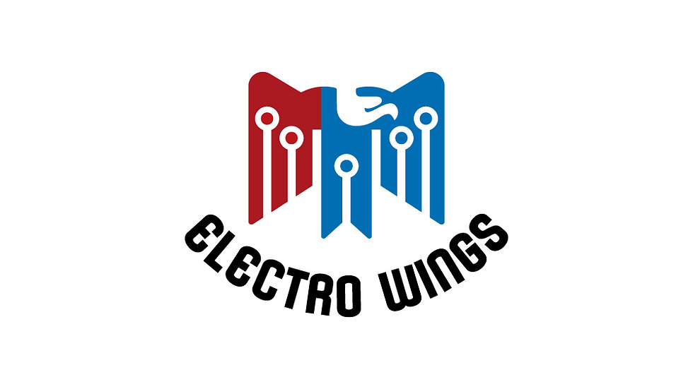 Electro Wings