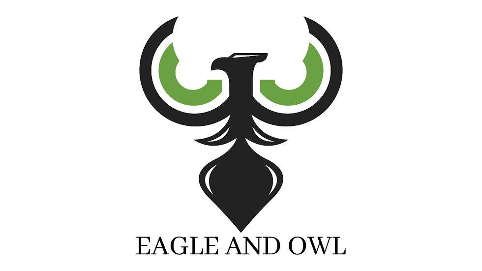Eagle And Owl