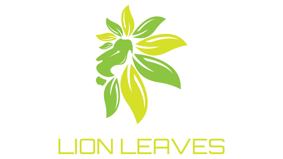 Lion Leaves Nature