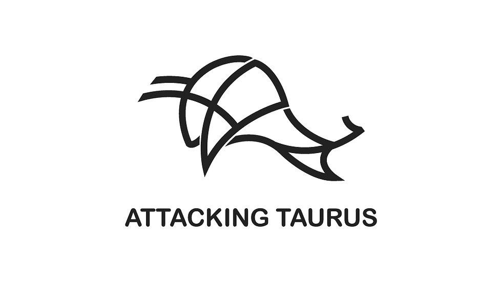 Attacking Bull