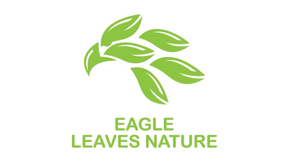 Eagle Leaves Nature