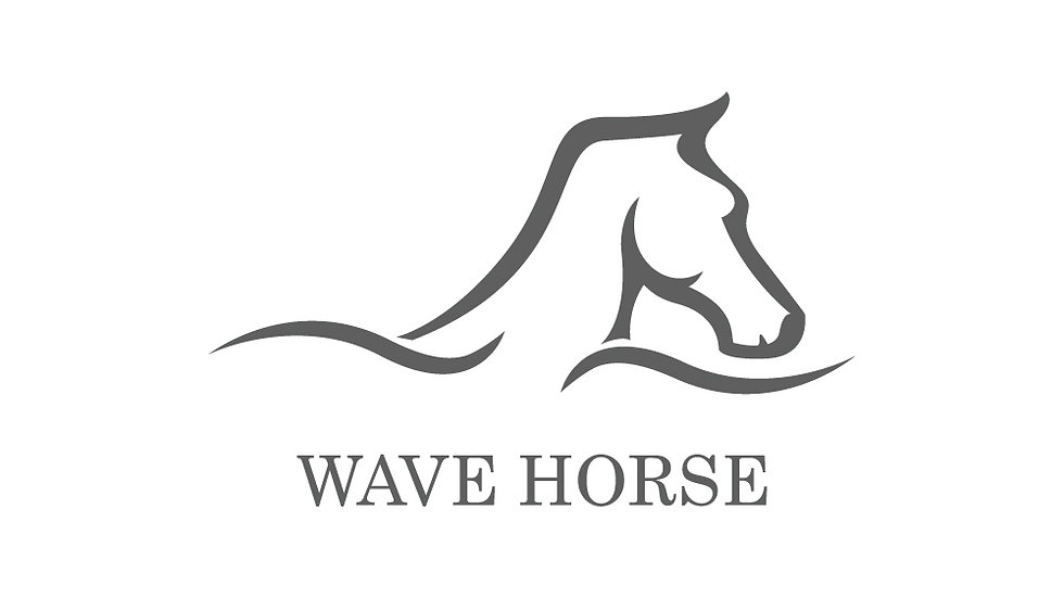 Wave Horse