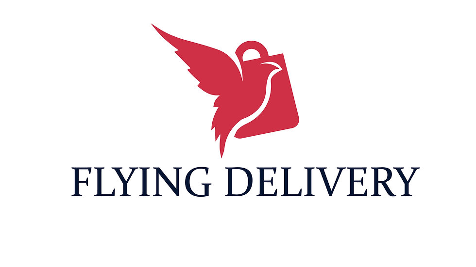 Flying Delivery