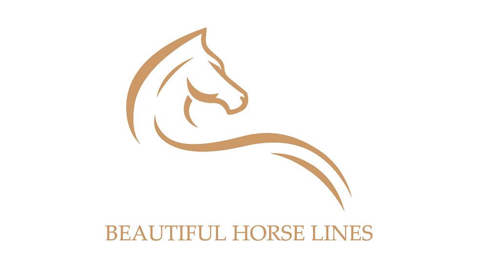 Beautiful Horse Lines