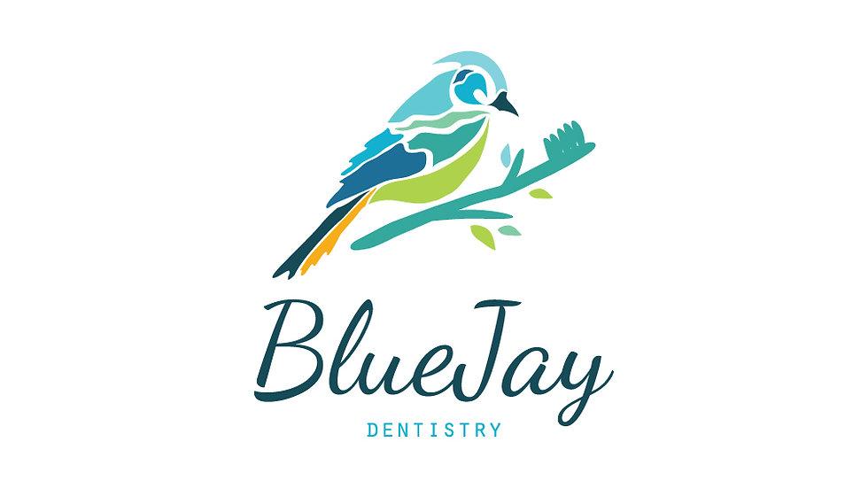 Blue Jay Bird Dentistry