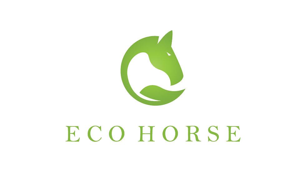 Eco Horse