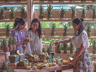 【西表島ホテル】パイン祭り (3).jpg