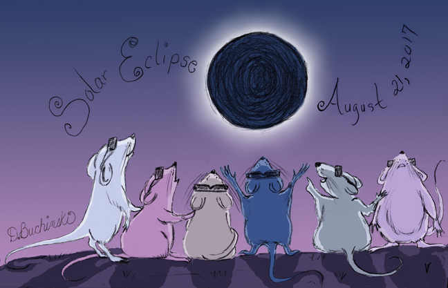 Mouse Eclipse