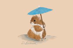 Hamster in the Shade.JPG