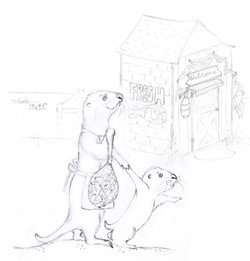 Otters at Fish Shoppe