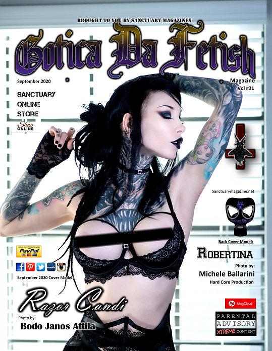 gdf vol21 cover.jpg