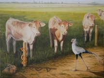 Covid 19, 'hoe vangt een koe een haas', Fortmond, Olst-Wijhe 2020