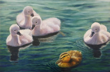 Duck lives matters ,40x60 olieverf 2020