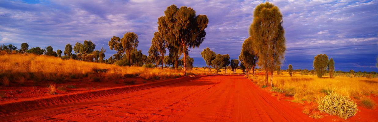 Casuarina Road