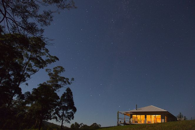 Starry nights at Wilderberry