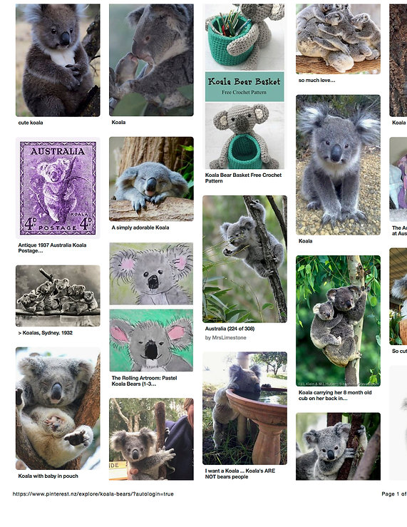 koalas on Pinterest.jpg