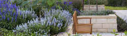 Summer garden bliss