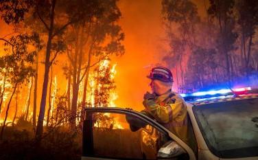 firefighter car.jpg