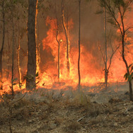 Bush_fire_at_Captain_Creek_central_Queen