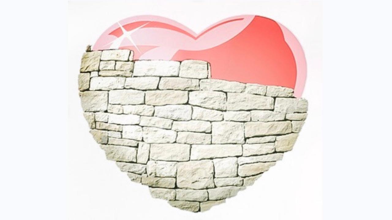 Lab # 65 Heart Wall